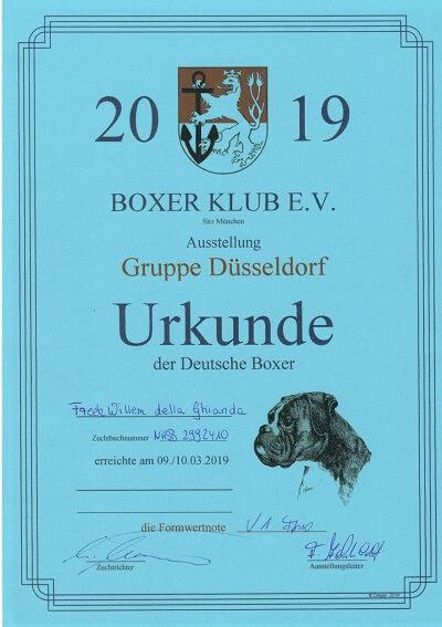 Freek Willem della Ghianda Dusseldorf 2019